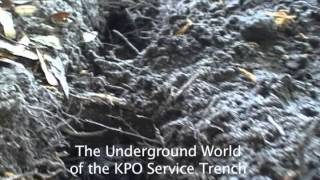 Building KPO: Chapter 4 - The Service Trench