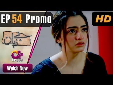 Pakistani Drama   Bezuban - Episode 54 Promo   Aplus Dramas   Usama Khan, Nawal Saeed, Junaid