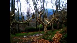 Video del alojamiento El Refugio de Luena
