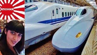Япония, Поезд - Пуля, Так Вот Ты Какой, Утёнок