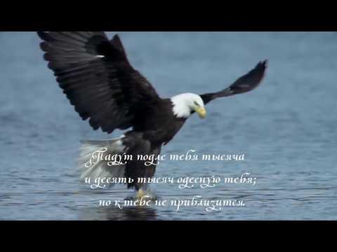 Псалом 90. Живущий под кровом Всевышнего под сенью Всемогущего покоится
