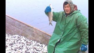 Рыбалка река таз