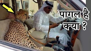 Top 10 STRANGE and Weird Things you will only see in Dubai | हिन्दी