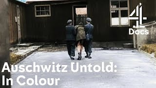 Auschwitz Untold: In Colour | What Happened Right Before Jewish Concentration Camps Were Liberated?