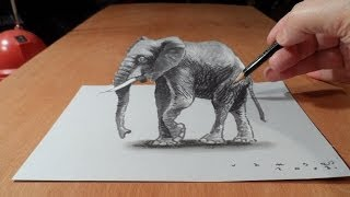 3D Drawing Elephant, How to Draw 3D Elephant on Paper