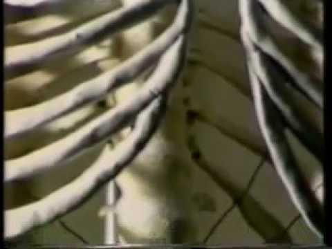 Кал на яйца глист срок годности анализа