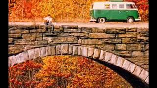 Angry Johnny And The Killbillies-Middlefield Train Track Blues