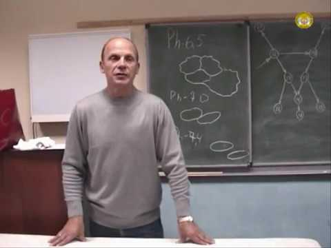 Фон для презентации паразиты