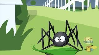 TikeTunes - L'araignée Gypsie