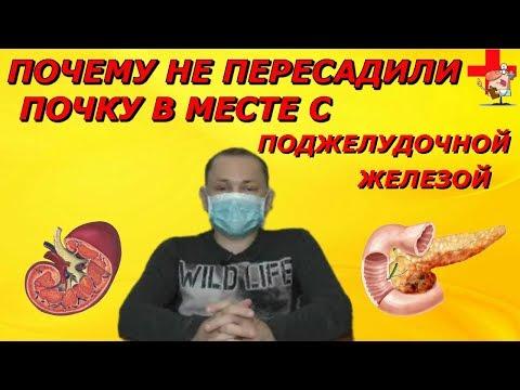 Трансплантация поджелудочной железы и почки.