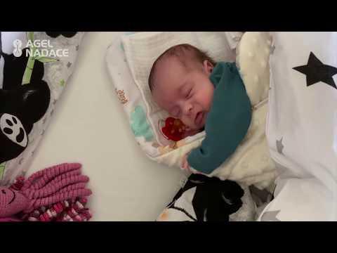 Video: 4. díl