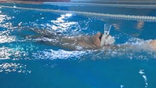 Техника плавания кролем на спине