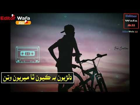 Shaman Ali Mirali | Wai Yaari Hali Pahnje Yaaran Maan