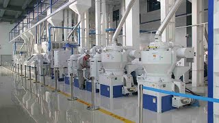 Automatic Rice Milling Plant