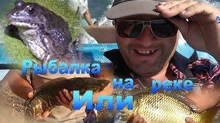 Рыбалка на Или (закрытие летнего сезона) 30-31.08.19