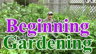 Beginning Gardening Series #1: Best Location for a Vegetable Garden