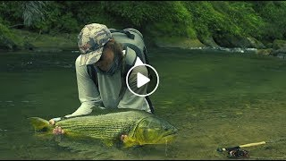 Fly Fishing for Dorado in Bolivia in TSIMANE 3X – Season Two