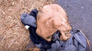 Rescue Abandoned Dog Sleeps On Human's Jacket, Wait For Owner Return
