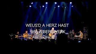"""Rainhard Fendrich """"Weus'd a Herz hast wia a Bergwerk"""" (live und akustisch - Ausschnitt)"""