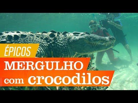 Karina Oliani mergulha com crocodilos no México | Épicos | Canal OFF