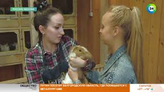 Москвичам предложили побыть фермерами без выезда из города - МИР24