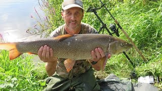 BARBEL FISHING FISKERTON RIVER TRENT