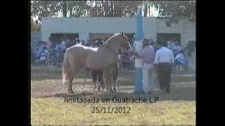 preview picture of video 'Reservado El Canario con Horlando Cordoba'