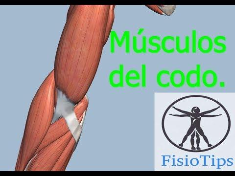 Clonuses osteocondrosis