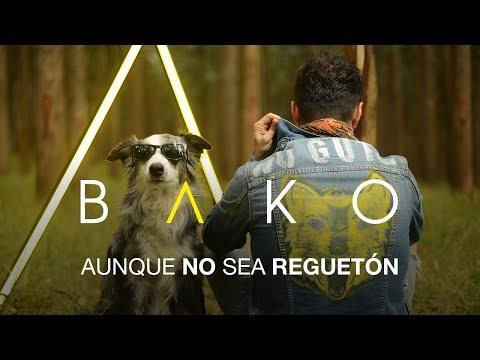 Bako - Mix Engineer - Brian Springer