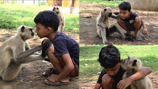 Marutis Priceless Friendship With This Langur Is Really Entertaining