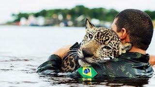 10 RESCATES DE ANIMALES MÁS INSPIRADORES