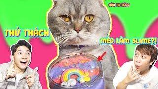 THỬ THÁCH MÈO CHUỐI LÀM SLIME! - *CAT SLIME CHALLENGE*