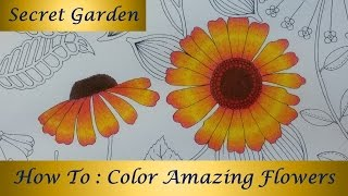 How To Color Amazing Flowers