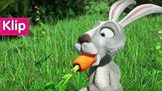 Maşa İle Koca Ayı - Açgözlü tavşan 🐰(Saklambaç Zayıflar İçin Değildir)