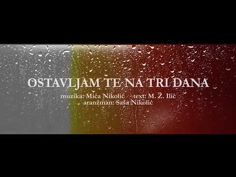 Djani Ostavljam Te Na Tri Dana Official Lyric Video 2019