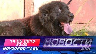 14.05.2019 Новости дня 20:00