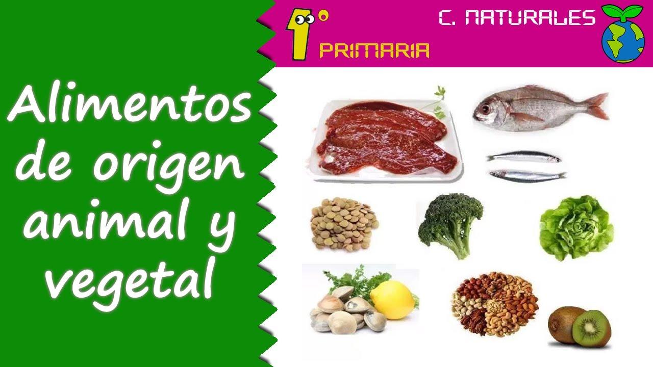 Ciencias de la Naturaleza. Tema 3: Alimentos de origen vegetal y animal