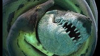 Terrible power of the largest snakes Earth history - Titanoboa