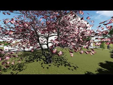 Video de maison Vidéo projet #8