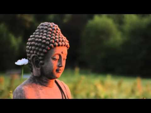 Der Yoga für die Abmagerung und die Flexibilität des Körpers