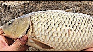 Отчет о рыбалка в астрахани осенью