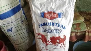Чем заменить сухое молоко в кентерои