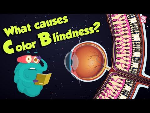 Manipura csakra-látomás