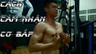 7 Lời khuyên giúp cảm nhận cơ bắp tốt hơn khi mới đi tập Gym   Nguyễn Hoàng Gym