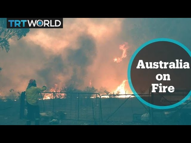 Australia Fires: 25 people killed and thousands of buildings destroyed