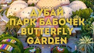 VLOG:Дубай/Парк бабочек - Butterfly Park/Куда сходить с ребёнком