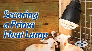 How To Secure a Prima Heat Lamp