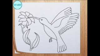 How To Draw Humming Bird / Colibri