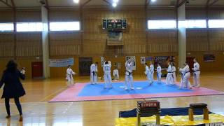 preview picture of video 'Škola Taekwon do ITF Frýdek Místek'
