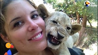 Woman Horrified to Find She Was Raising Lions To Be Killed at 'Sanctuary' | The Dodo